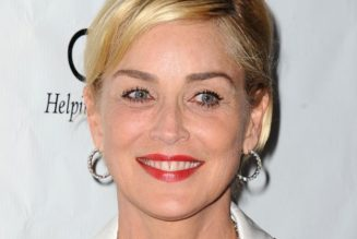 L'ACCIDENT VASCULAIRE CEREBRAL DE SHARON STONE L'ICONE DU CINEMA