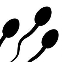 Logo du groupe Comment arriver à avoir 21 éjaculations ou plus par mois pour prévenir le cancer de la prostate ?